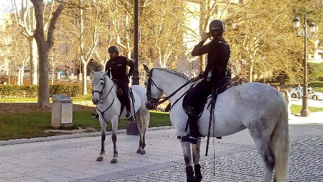 palacio-real-madrid-pferde