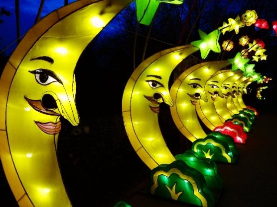chinesische-lichter-zoo-münster