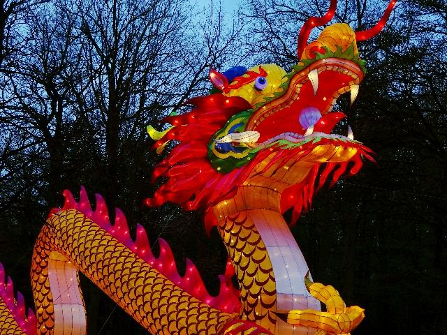 chinesischer-drache-münster