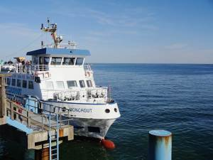 adler-schiffe-ruegen