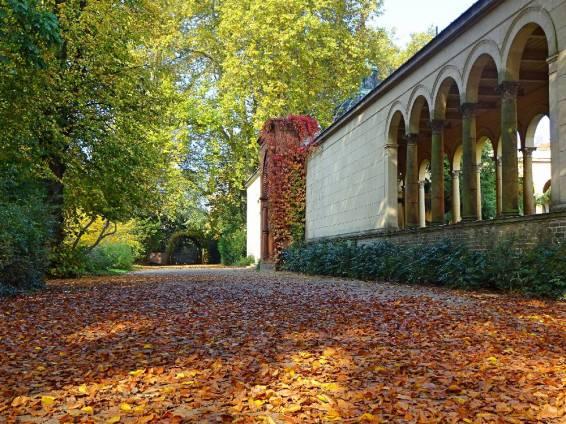 goldenes-herbstlaub-im-park