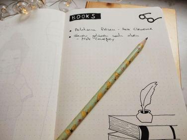 buecher-im-reisetagebuch