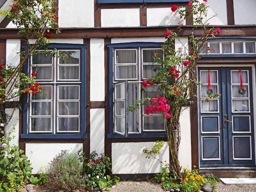 fachwerkhaus-mit-rosen